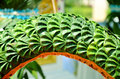 Free Handcraft Made From Banana Leaves. Royalty Free Stock Image - 27202536
