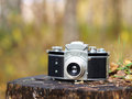 Free Old Camera On A Tree Stump Stock Image - 27206151