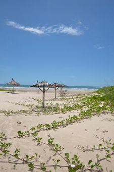 Free Beach Stock Photography - 27203592