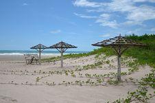 Free Beach Royalty Free Stock Photography - 27203617