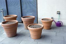 Free Seeding In Clay Pots On Balcony Royalty Free Stock Photo - 27212545