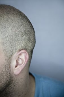 Free Back Of A Shaved Head &x28;ear Detail&x29; Royalty Free Stock Photography - 27226357