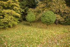 Free Park In Autumn Stock Images - 27233364