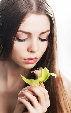 Free Sensuality Beautiful Female Flower, Fresh Orchid Stock Photos - 27241263