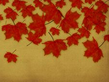 Free Paper With Red Leaves Royalty Free Stock Images - 27245239