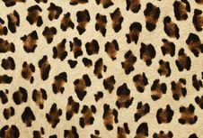 Free Tiger Skin Royalty Free Stock Images - 27247399