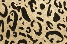 Free Tiger Skin Stock Image - 27247451