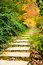 Free A Road In The Park Royalty Free Stock Photography - 27245467
