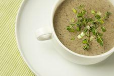 Free Mushrooms Cream Soup Stock Photography - 27253702
