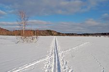 Free Ski Track In A Field Stock Photos - 27256263