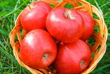 Free Apples In A Basket Royalty Free Stock Images - 27256409