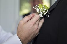 Free A Boutonniere Is Put On A Groom Royalty Free Stock Photography - 27256767