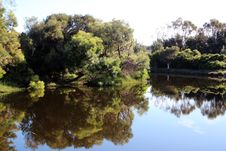 Reflections Of Australian Trees In Blue Lake Stock Image