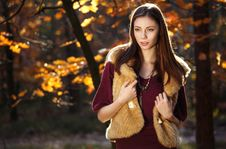 Free Beautiful Autumn Girl Smiling Royalty Free Stock Images - 27268269