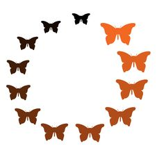Free Colorful Butterfly Mixed Orange Black In Circle Royalty Free Stock Images - 27271609