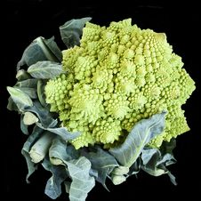 Free Romanesco Broccoli Stock Photo - 27276750