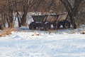 Free Old Cart In Snow Royalty Free Stock Photo - 27280125
