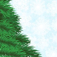Free Fir-tree And Snowflakes Background Stock Image - 27281201