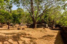 Free Gardens Of Sigiriya Lion S Rock Fortress Royalty Free Stock Image - 27281206