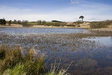 Free Priddy Pond, Somerset, Uk Stock Images - 27286294