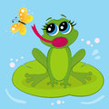 Free Frog Stock Photography - 27290762