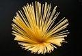 Free Spaghetti Stock Image - 27295651
