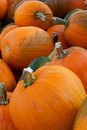 Free Pumpkins For Sale Stock Images - 27296424