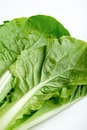 Free Green Vegetable Close Up Stock Photos - 27297123