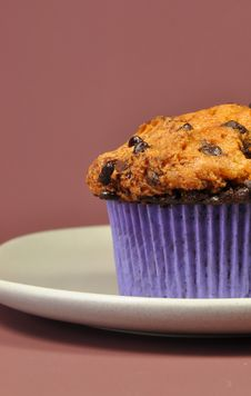 Free Chocolate Chip Muffin Closeup Royalty Free Stock Photo - 27292855