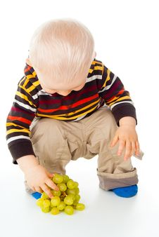 Free Little Child Picks Grapes Royalty Free Stock Photos - 27296858