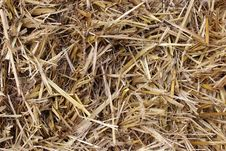 Free Background Of Brown Hay Royalty Free Stock Images - 27298119