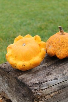 Free Two Pumpkins Royalty Free Stock Photo - 27298315