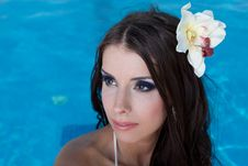 Free The Beautiful Girl In Pool Royalty Free Stock Images - 27298409