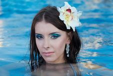 Free The Beautiful Girl In Pool Royalty Free Stock Photo - 27299045