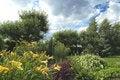 Free Summer Landscape Royalty Free Stock Photo - 2731255