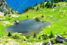 Free Small Pond In The Alps Royalty Free Stock Photos - 2730988