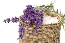 Free Lavender Bath Royalty Free Stock Photography - 2731357