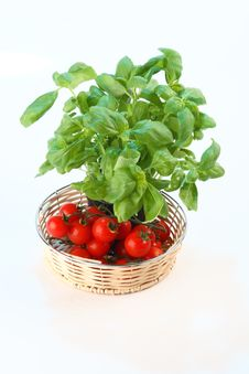 Free Tomatoes And Basil Royalty Free Stock Photo - 2733185