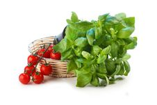 Free Tomatoes And Basil Stock Images - 2733194