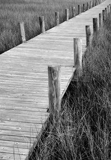 Free Wooden Boardwalk Royalty Free Stock Images - 2733199