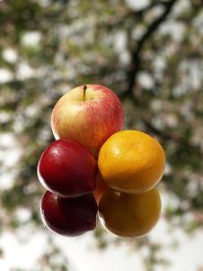Apple,orange,plum Stock Photo