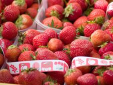 Free Strawberries Stock Photography - 2735272
