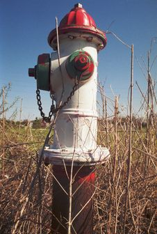 Free Lone Fire Hydrant Stock Images - 2736504