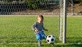 Free Little Boy Kicking A Ball Stock Image - 27304041