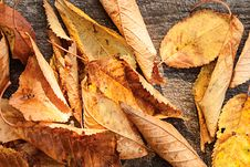 Free Autumn Leaves Over Wooden Background Stock Photography - 27301112