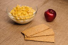 Free Bowl Of Cornflakes With Milk Royalty Free Stock Photography - 27304457