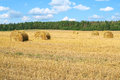 Free Field With Haystacks Stock Images - 27311894
