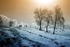 Free Winter Scenery Royalty Free Stock Images - 27318619