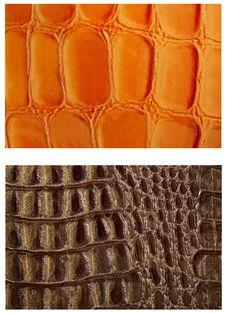 Free Pattern Snake Skin Leather Royalty Free Stock Photo - 27318715