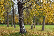 Free Autumn Park Stock Image - 27319691
